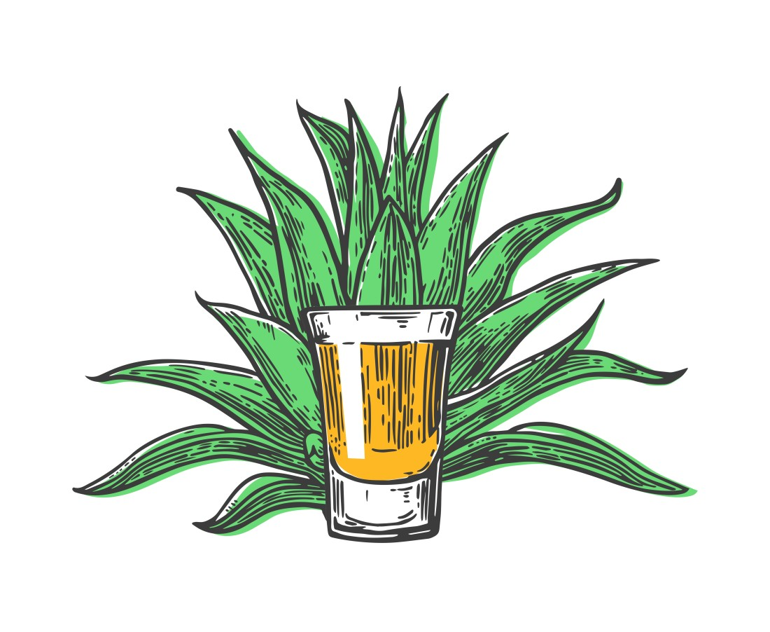Filled shot glass in front of agave plant